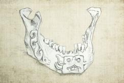 jawbone-exp1