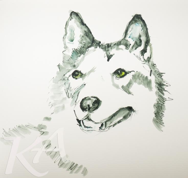 wolf-face-yupo